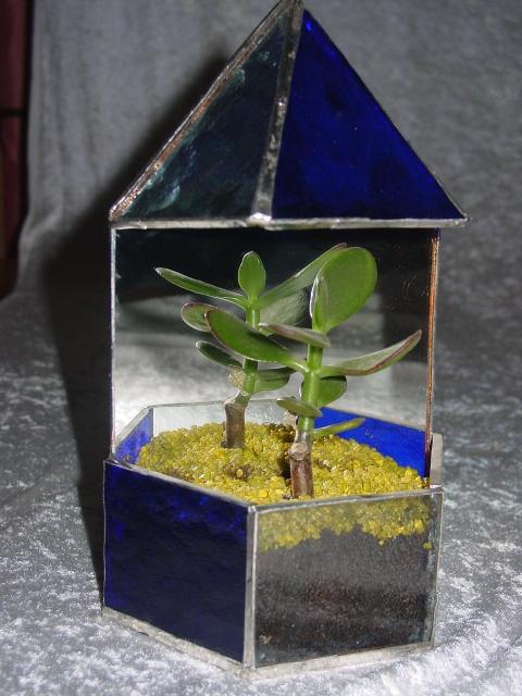 Serra in vetro Tiffany blu